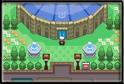 pokemon_flora_sky_04