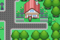 pokemon_flora_sky_12