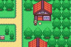 pokemon_flora_sky_36