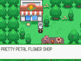 pokemon_flora_sky_51